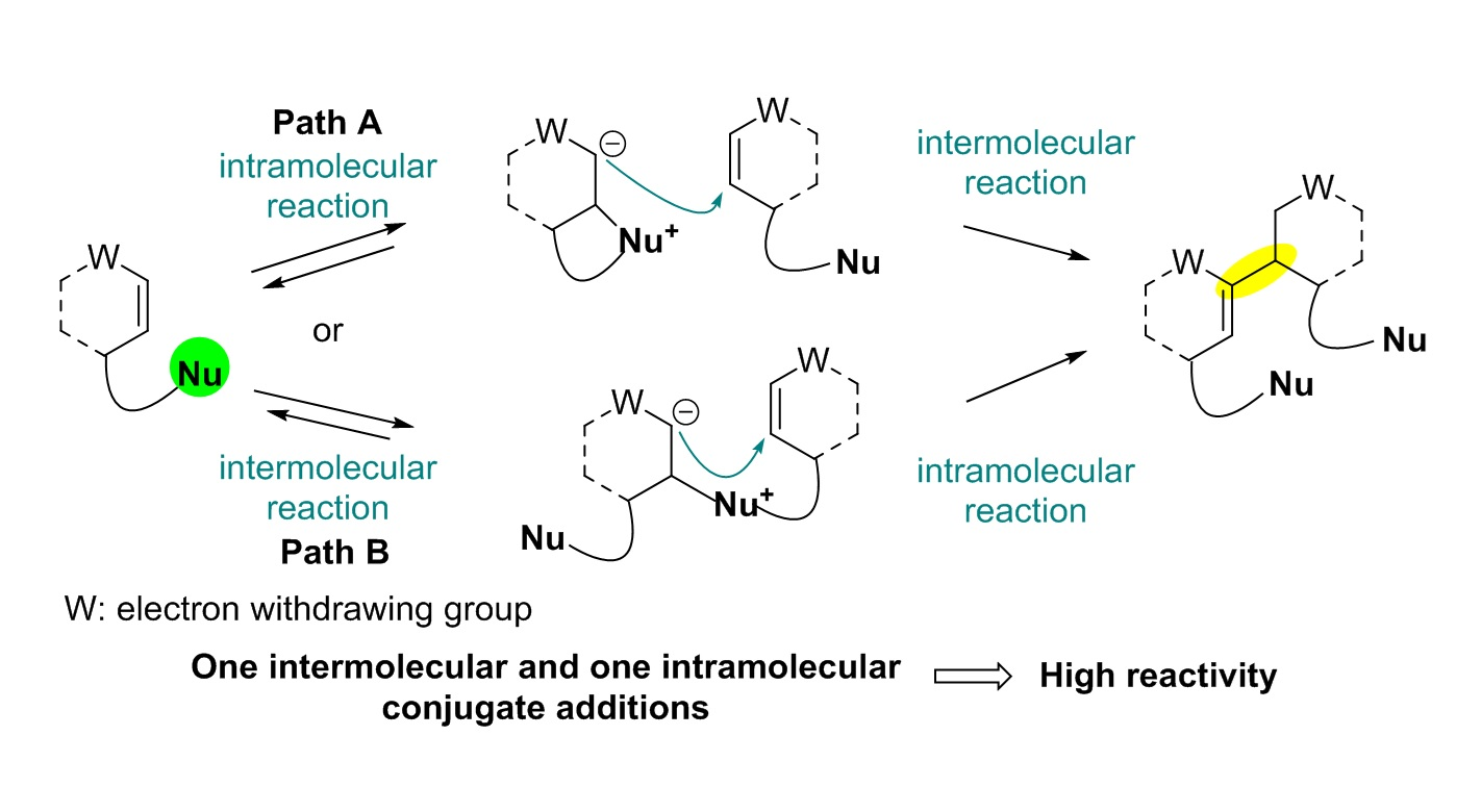 Total Synthesis of Flueggenine C via an Accelerated Intermolecular Rauhut-Currier Reaction 이미지2