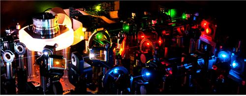 초고속 레이저 생체현미경 (IVM) 사진1