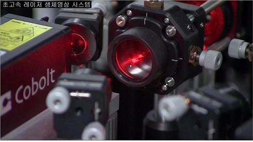 초고속 레이저 생체현미경 (IVM) 사진2