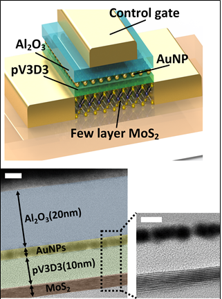 Ultra-Low Power Flexible Memory Using 2D Materials 이미지3