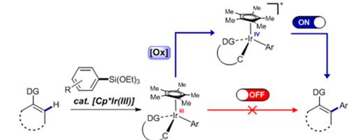 New Arylation Inducing Reaction Developed 이미지4