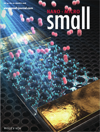 The front cover image of Small dated on March 8