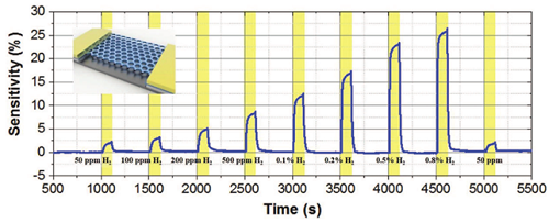Gas sensor responses upon the exposure to H2 at various concentrations