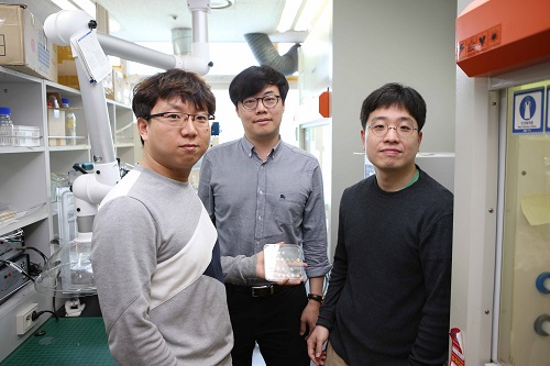 Research team of Professor Park, Professor Jung, and research fellow Gao Min