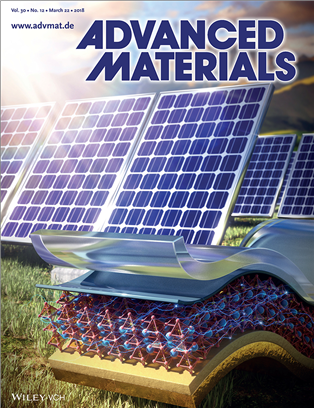 Figure 1. Cover of Advanced Materials