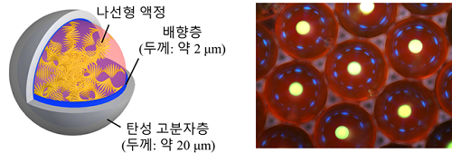 캡슐형 레이저 공진기의 구성 (좌) 및 광학 현미경 사진 (우)