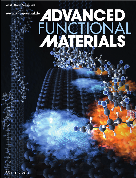 Figure 1. Inside back cover of Advanced Functional Materials