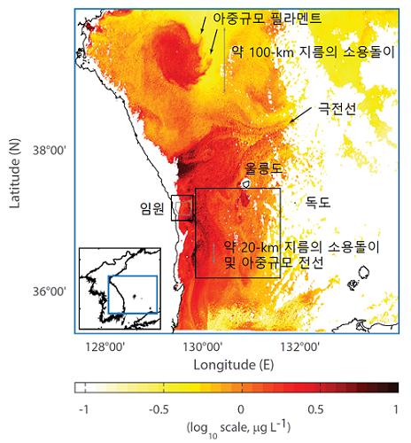 동해에서 해색위성을 이용해 관측된 표층 엽록소 농도장에서 표현된 아중규모 난류 유동의 예