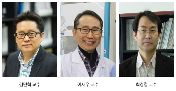 김민혁, 이재우, 최경철 교수