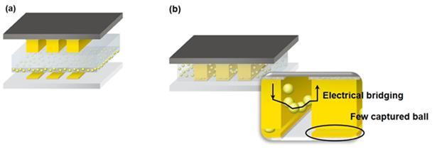 극 미세피치 디스플레이 어플리케이션에 통상적인 ACFs를 사용한 모식도 (a) 접합 공정 전, (b) 접합 공정 후 이미지