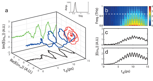 Figure 2. The complex amplitude of light at the converted frequency with the variation of a spatiotemporal boundary.