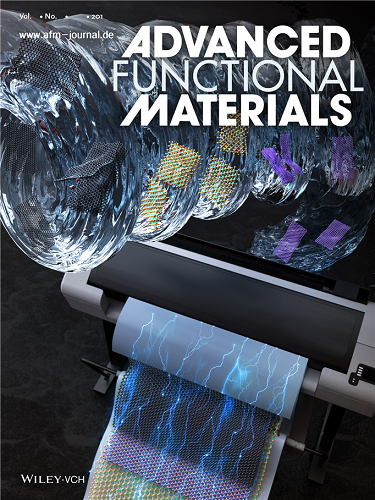 Figure 1. The cover page of Advanced Functional Materials