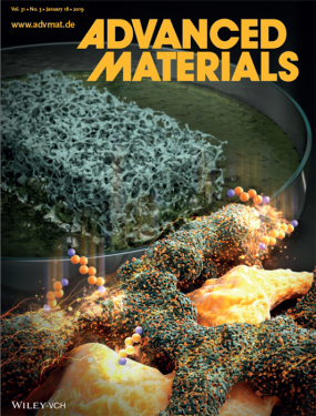 Figure 3. The cover page of Advanced Materials