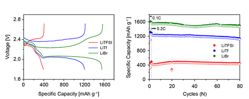 리튬황전지의 사이클 용량 및 수명 특성