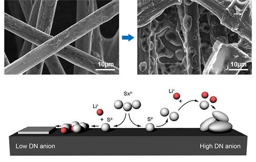 전해질에 따른 전극 위 리튬 설파이드 성장 구조 및 축적 메커니즘