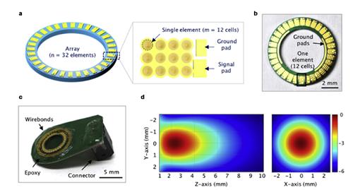 정전용량형 미세 초음파 소자의 (a-c) 구조 및 (d) 2D 시뮬레이션 빔 형