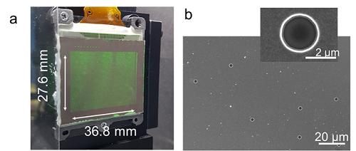 실제 구현된 3차원 홀로그래픽 디스플레이와 전자현미경 이미지