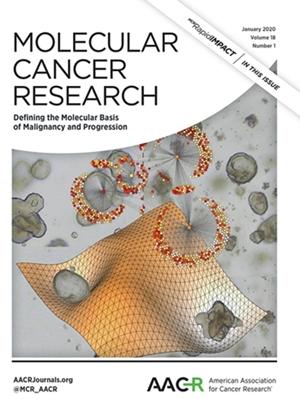 조광현 교수, 암세포를 정상세포로 되돌리는 초기 원천기술 개발 이미지1